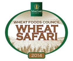 Wheat Safari